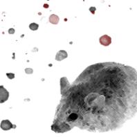 mouserm